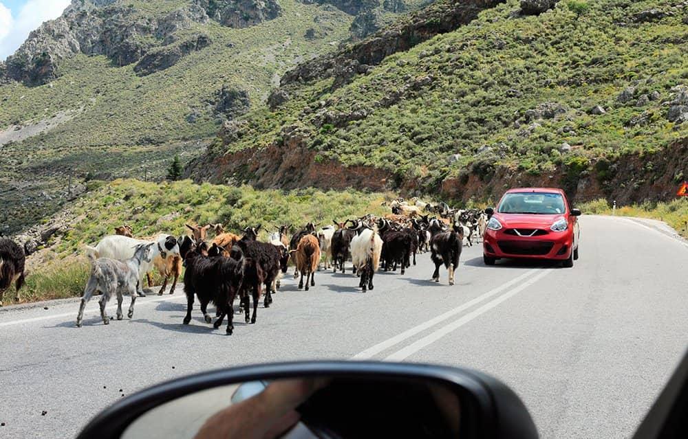 De weg vinden op Kreta